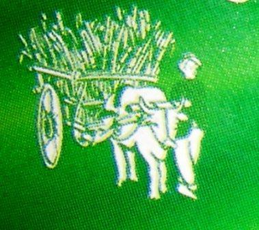 La charrette b uf histoire et familles dans l ocean indien - Charrette dessin ...